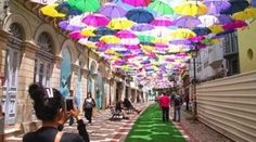A Colorful Canopy Of Umbrellas Have Taken Over This Street In Portugal