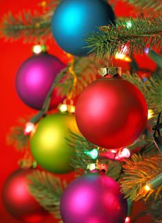Colorful Christmas Ornaments on Tree
