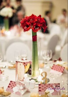 Amaryllis centerpiece Aranjament de masa cu amaryllis Aspiration Events Centerpieces, Table Decorations, Wedding Designs, Floral Wedding, Events, Home Decor, Decoration Home, Room Decor, Center Pieces