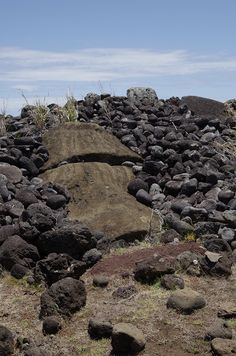 Rapa Nui / Easter Island / Isla de Pascua. Buried moai and topknot/ pukao in the front of Ahu Vai Mata on the northeast coast of the Island. Rapa Nui Archaeology (17). Photo: Mike Seager Thomas, UCL Rapa Nui Landscapes of Construction Project. You are welcome to use/ circulate the photo but please credit it to the project
