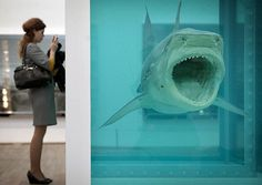 Looking at art I ~'The Physical Impossibility of Death' by Damien Hirst, Retrospective at the Tate Modern Pictures Of The Week, Cool Pictures, Damien Hirst Art, Tate Modern Museum, You're The Worst, Science Art, Installation Art, Contemporary Art, Modern Art