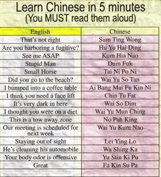Learn Chinese in 5 minutes HAHA