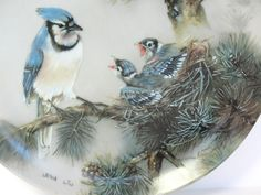 Porcelain Plate Bird Lena Liu Blue Jay Morning Chorus Natures Poetry 16593A 1990 by MicheleACaron on Etsy