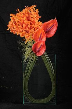 Wedding Flower Arrangements A gorgeous exotic arrangment featuring bright orange Vanda Orchids punctuated with Red Anthuriums bound together with Bear Grass Modern Floral Arrangements, Orchid Arrangements, Floral Centerpieces, Table Centerpieces, Grass Centerpiece, Tropical Flower Arrangements, Arte Floral, Deco Floral, Ikebana