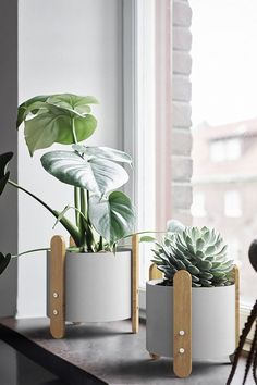 Add a touch of scandi style and display your favorite indoor plant with the gorgeous Jessamy stake frame planter! Made from iron metal. Available in a range of colors & sizes, sold individually. Free Worldwide Shipping & Money-Back Guarantee Old Wall, Modern Planters, Decor, Hanging Planters, Nordic, Wall Planter, House Plants Indoor, Modern, Plant Stand