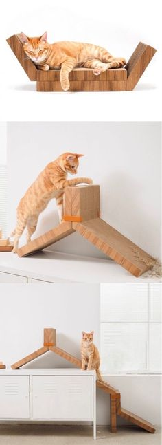 Cats Toys Ideas - Need to bring some style and functionality to the life of your cat? These cat toys, beds, pods, and fixtures leave clunky, cheesy and cartoon-printed cat furnit - Ideal toys for small cats Modern Cat Furniture, Pet Furniture, Redoing Furniture, Wooden Furniture, Furniture Ideas, Cat House Diy, Diy Cat Toys, Pet Toys, Diy Home