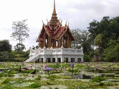 AMAZING THAILAND SUAN LUANG