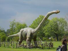 Dinosaur in Lubiana