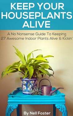 FREE on Kindle: July 27  ~~  Keep Your Houseplants Alive  ~~ A No Nonsense Guide To Keeping 27 Awesome Indoor Plants Alive & Kickin'