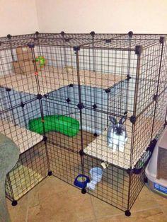 Multi-level Bunny Housing