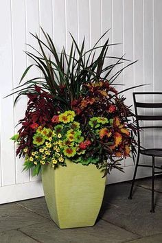 Plant Container tips: A general design rule is to mix elements, such as vertical and cascading.