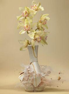Untitled (Orchidaceae) 2007 - Martin Klimas