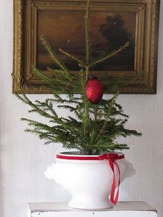 white pot with small tree. one red ornament and red ribbon tied around pot.