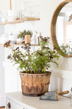 Foraged Clippings for Simple Autumn Decor - Pine and Prospect Home French Style Decor, French Home Decor, French Interior Design, Fall Kitchen Decor, The Way Home, Fall Table, Autumn Home, Cottage Style, Simple