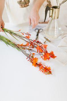 shoulda been a florist // mid-century simplicity jojotastic.com @jojotastic