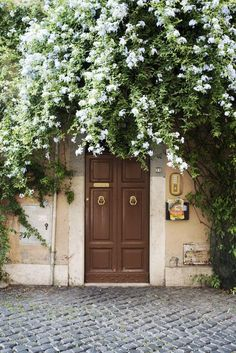 Overgrown doorway, don't even mind. Gorgeous doorway ivy and flowers -- wish my front door looked like this all year round!