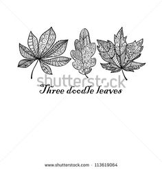 Three doodle textured leaves background.