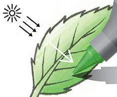 Chameleon Color Tones Pens Techniques - CreateAndCraft