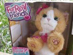 FurReal Friends Daisy Plays-With-Me Kitty Toy   Mama Likes This