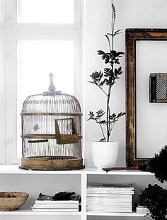 I think I want a bird cage for my home office.