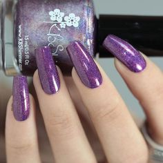 """Available on @color4nails (link on my bio) KBShimmer {Orchidding Me?} @kbshimmer from """"Fall 2016"""" collection. Use my code 💰Laura10💰 on @color4nails store for -10% off on all your orders. #Color4Nails #KBShimmer #OrchiddingMe #prsample #Fall2016 #amazing_pretty #nailitdaily #naturalnaillover #swatch #nailswatch #nail #nails #uñas #manicura #esmalte #polish #nailpolish #holo #holopolish #holographic #purple #purplepolish #purpleholo #indie #indiepolish #indieswatch #supportindie"""