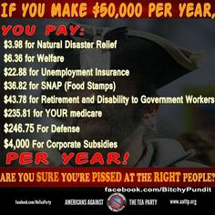How much of your taxes go to food stamps and how much goes to corporate subsidies?