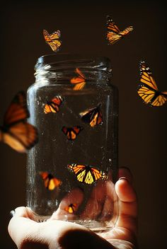 A glass jar that anything can come out of... magic!