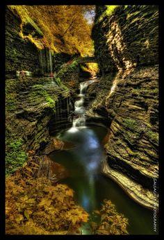 Watkins Glen State Park | Watkins Glen State Park | Favorite Places & Spaces