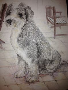 Jessica Lewis - Chalk drawing of my dog