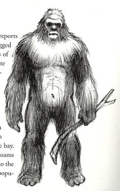 Drawling From Book Of Sasquatch Carrying A Stick