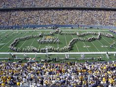 West Virginia University Marching Band named one of the top college bands by Huffington Post.