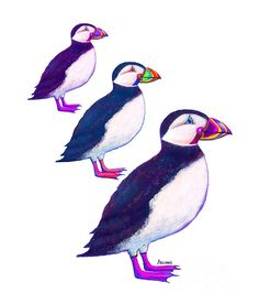 Purple Puffin Image. watercolor/digital art by Teresa Ascone