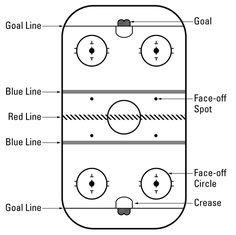 Hockey for dummies---I think I need this.