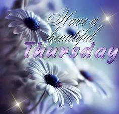 Have a beautiful Thursday quotes quote days of the week thursday thursday quotes happy thursday happy thursday quotes Nice Good Morning Images, Good Morning Picture, Good Morning Good Night, Morning Wish, Good Morning Quotes, Morning Morning, Good Morning Happy Thursday, Happy Thursday Quotes, Good Morning Thursday