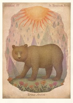 Bears - In Honor of Spring by V L A D I M I R, via Behance
