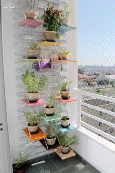 Monyke Marinho mostra seu jardim vertical