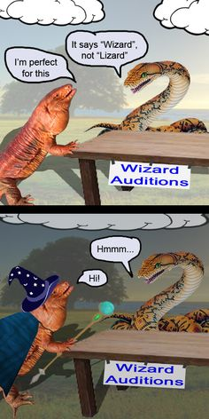 This lizard may not be the best at reading, but he is clever and can think on his feet.