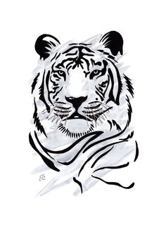 Tiger- I want my cousin to draw this so bad. (Best Paint In The World) Tiger Drawing, Tiger Art, Animal Paintings, Animal Drawings, Art Drawings, Tattoo Tribal, Tiger Tattoo Design, Desenho Tattoo, Tattoo Stencils