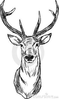 mannetjes hert tekening - Google zoeken
