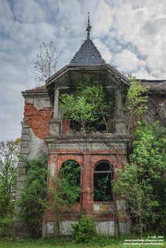 FotoFakty | Wioletta Kozłowska: Pałac w Międzylesiu