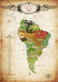 The South American Herb Map - Select Latin America Latin America, South America, Cultures Du Monde, Pictorial Maps, Map Globe, Africa Map, Fantasy Map, Old Maps, Vintage Maps