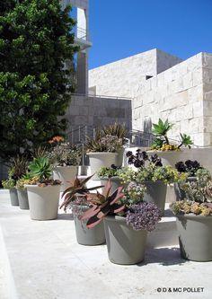 05/2005 Musée Getty. Situé sur les hauteurs de Santa Monica, un superbe musée par ses collections, son architecture et son jardin.
