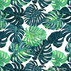 Vector seamless pattern with green monstera palm leaves on dark background. Tropical Wallpaper, Nature Wallpaper, Front Cover Designs, Washable Wallpaper, Tropical Fabric, Stoff Design, Tropical Vibes, Button Art, Dark Backgrounds