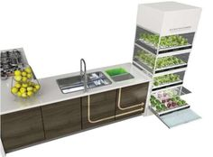 Sink-Grown Gardens (UPDATE)  The Kitchen Nano Garden Makes Growing Your Own Veggies Effortless.   Now features a system designed to take excess water from the sink and feed it to the plants.