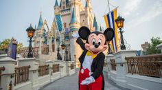 Why Disney World Cancelling Everything Is Actually A Good Thing Disney World Resorts, Disney World News, Disney Vacations, Disney Trips, Disney S, Disney Magic, Disney Parks, Disney Word, Disney Website