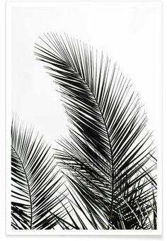 Palm Leaves 1 als Premium Poster von Mareike Böhmer | JUNIQE