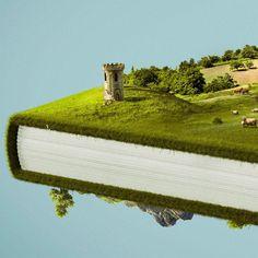 #BuenosDías los #libros no siempre reflejan la realidad, a veces, la embellecen