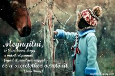 Child Horse Winter Snow Curiosity hd wallpaper by parislane My Horse, Horse Love, Horse Girl, Friendship Wallpaper, No One Loves Me, Baby Pictures, Pretty Pictures, Live For Yourself, Cute Kids