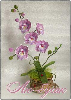 Орхидейка