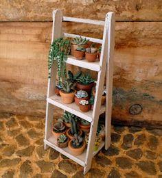 Pin by ka on suculentas in 2019 Succulent Planter Diy, Diy Planters, Succulents, Cactus Plants, Garden Plants, Indoor Garden, Cactus Y Suculentas, Back Gardens, Ladder Decor